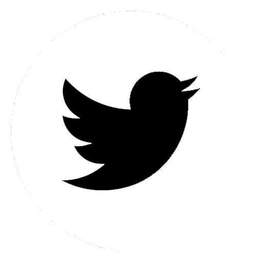 Liens vers le compte Twitter de l'INSHEA